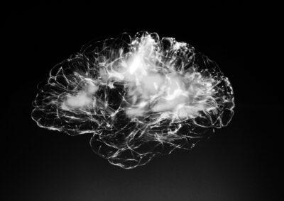 Das Bild zeigt Nervenfaserbahnen die unterschiedliche Regionen im Gehirn verbinden